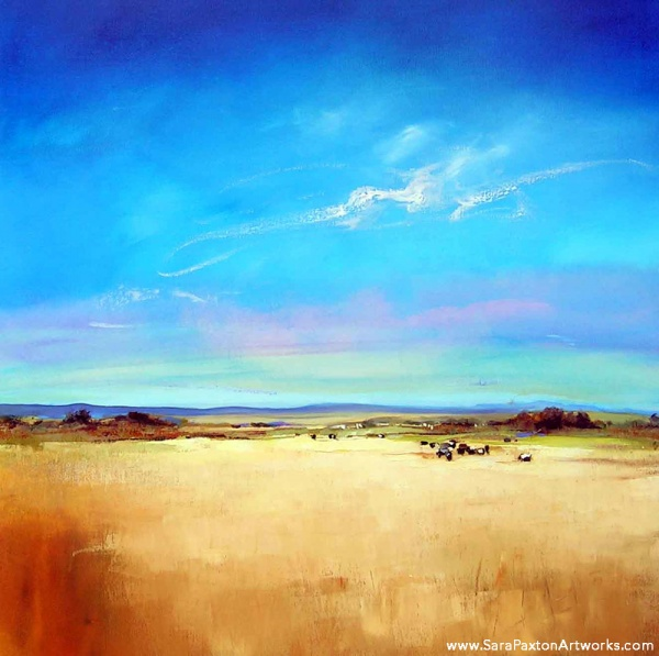 Summer Pastures 106x106cm - Seaview gallery Queenscliff exhibition