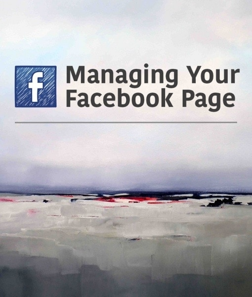 Managing You Artist Facebook Page_SPA